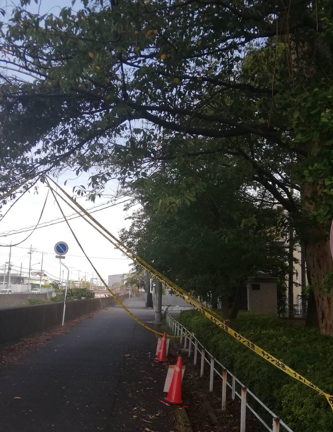 本郷公園北松戸