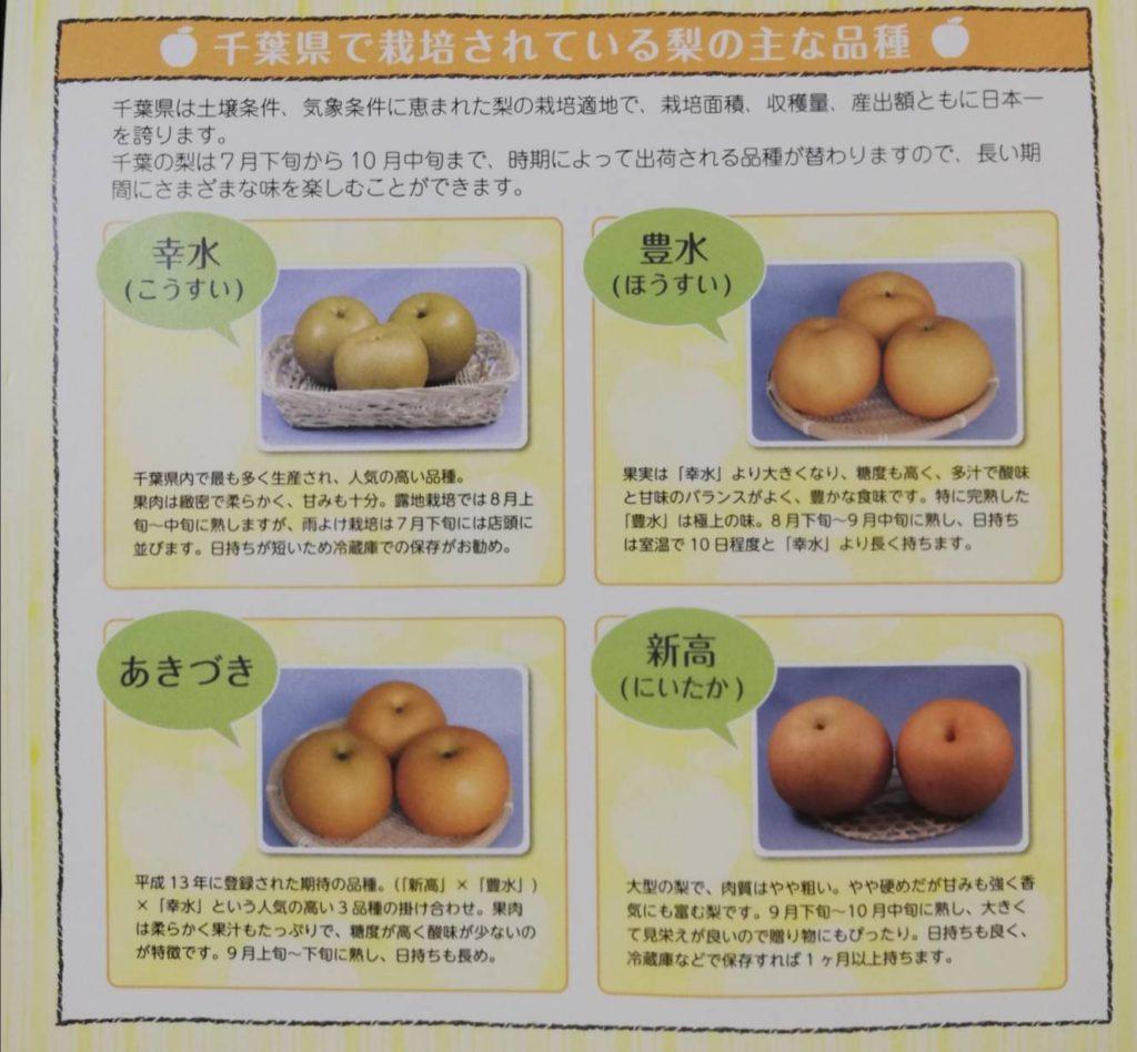 梨新品種2021年