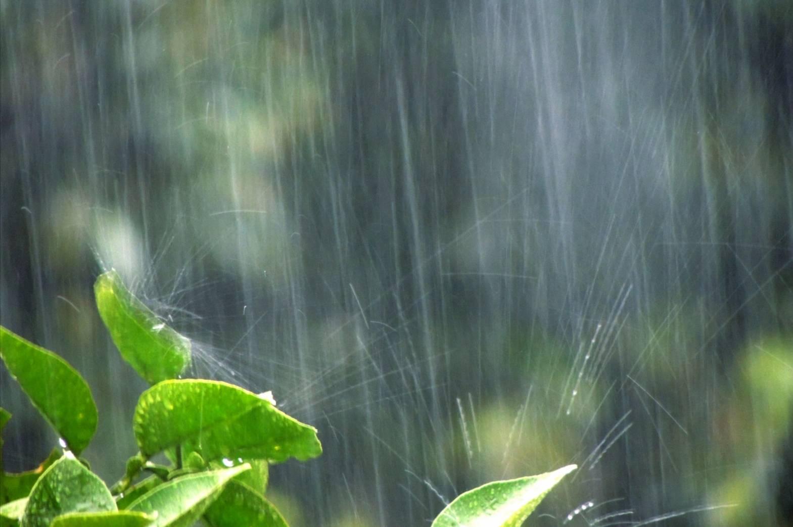 松戸市大雨警報
