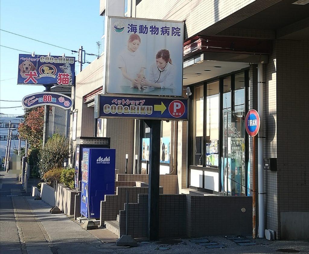 ペットショップCoo&RIKU 鎌ヶ谷店