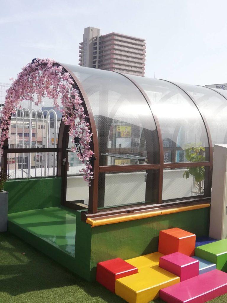 屋上庭園アトレ松戸桜期間限定