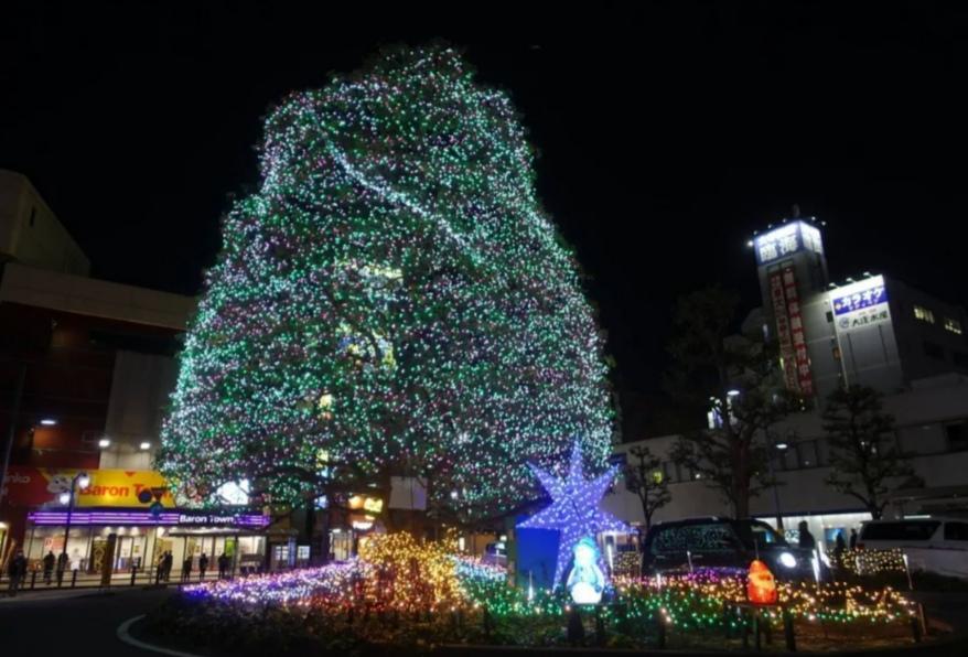 新松戸光のフェスタイルミネーション2021年
