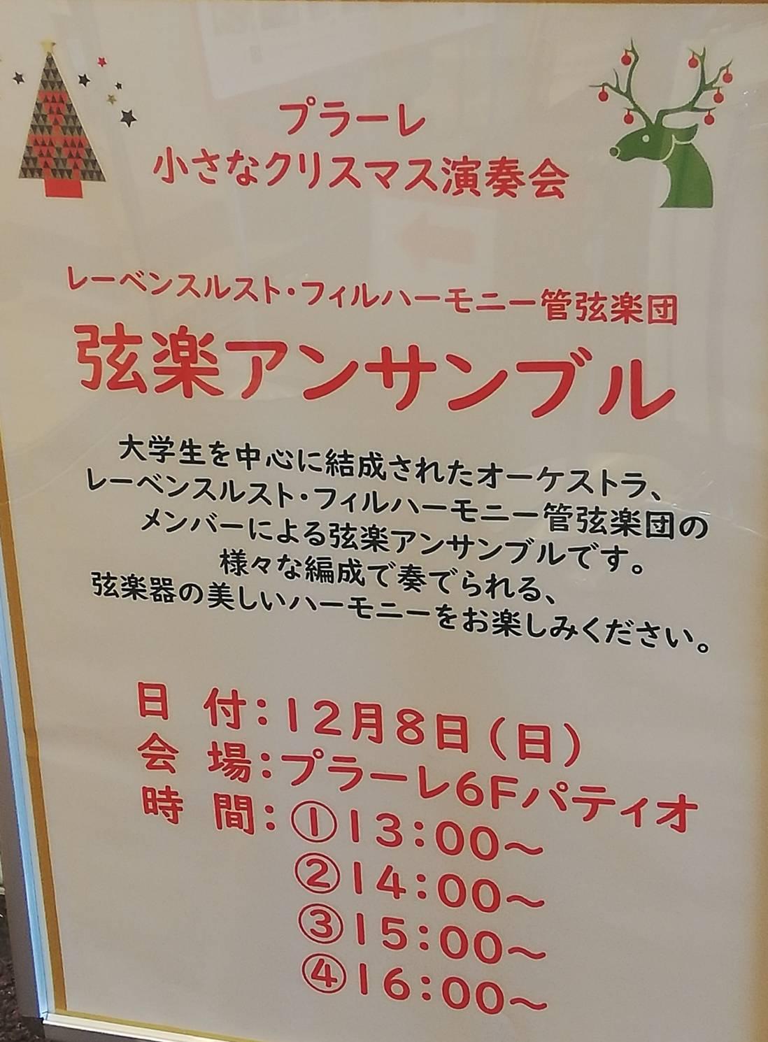 クリスマス音楽祭プラーレ松戸、弦楽