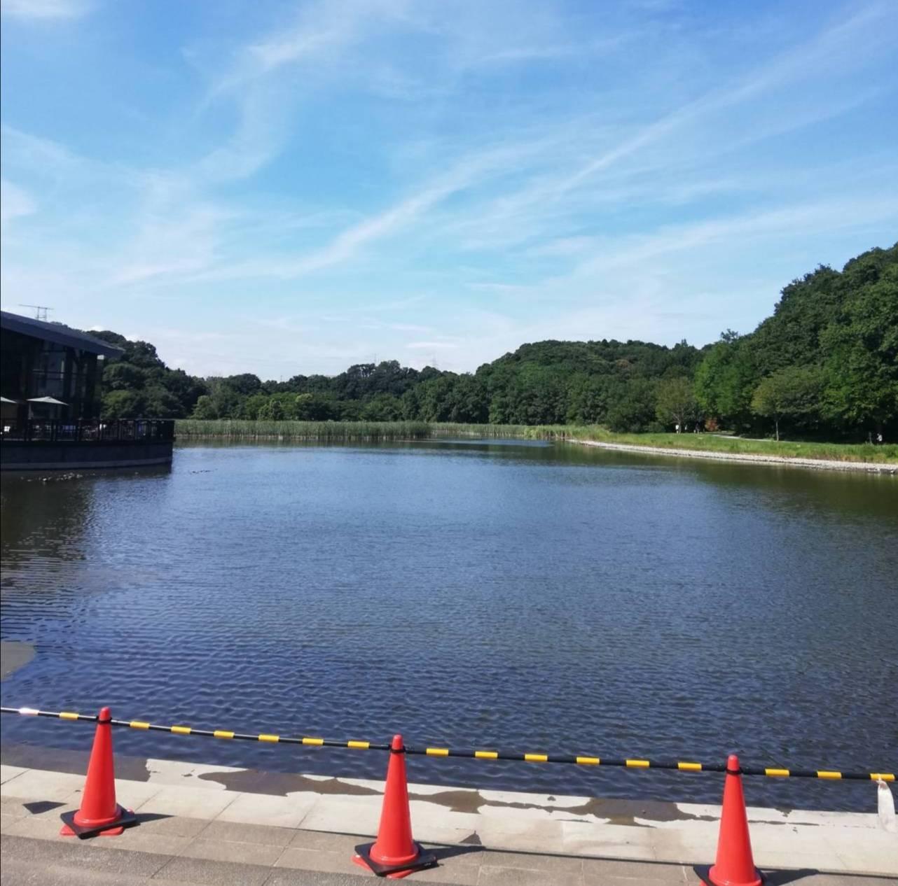 池の水ぜんぶ抜く松戸市21世紀の森と広場