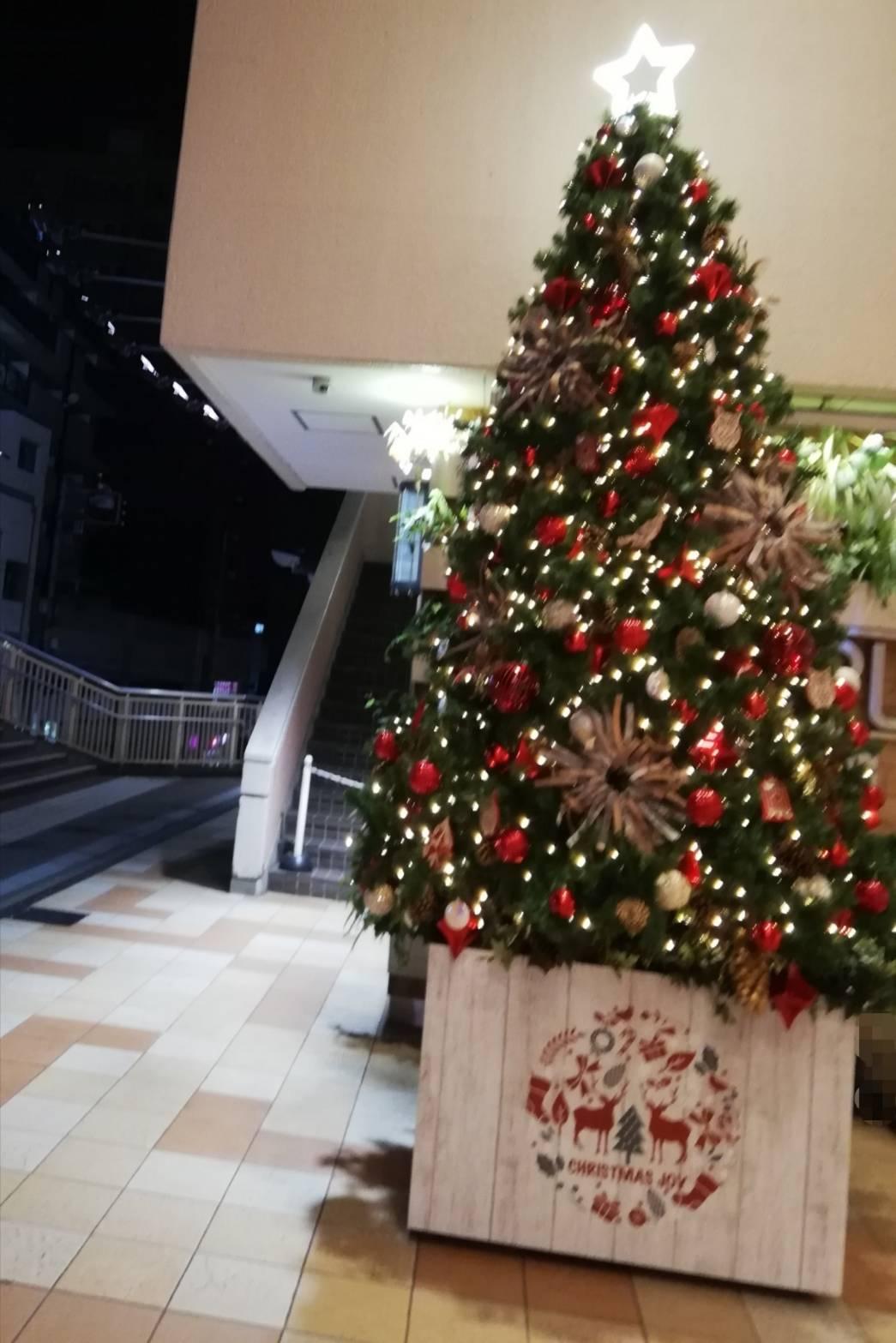 プラーレ松戸クリスマスツリー2020イトーヨーカドー松戸店