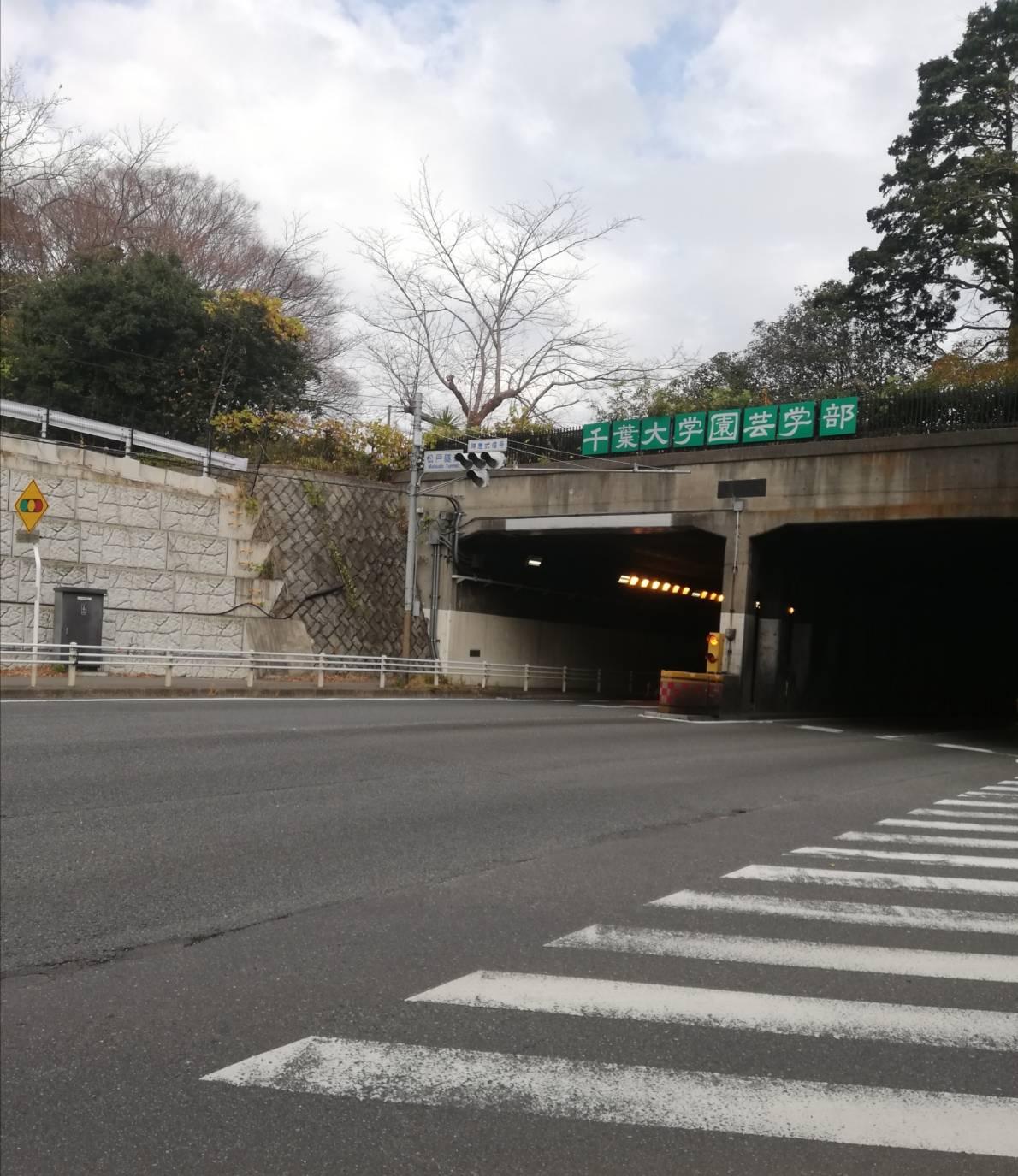 松戸隧道入口交通事故ひき逃げ追突
