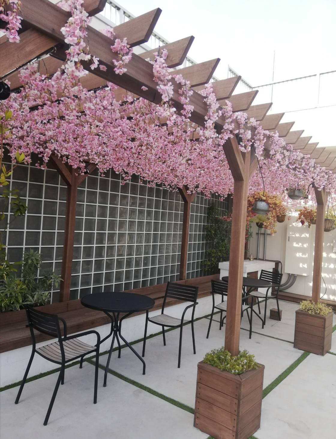 屋上庭園ガーデンテラス桜スポット